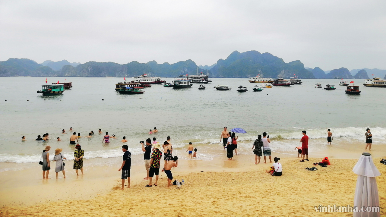 thông tin du lịch vịnh lan hạ – vinhlanha.com